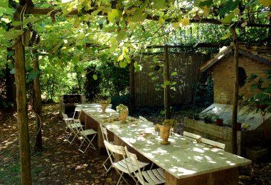Итальянские перголы для винограда