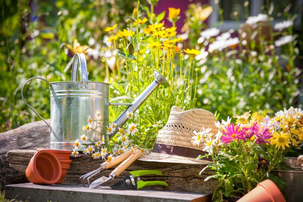 http://zgnrus.ru/wp-content/uploads/2016/12/Gardening-1024x683.jpg